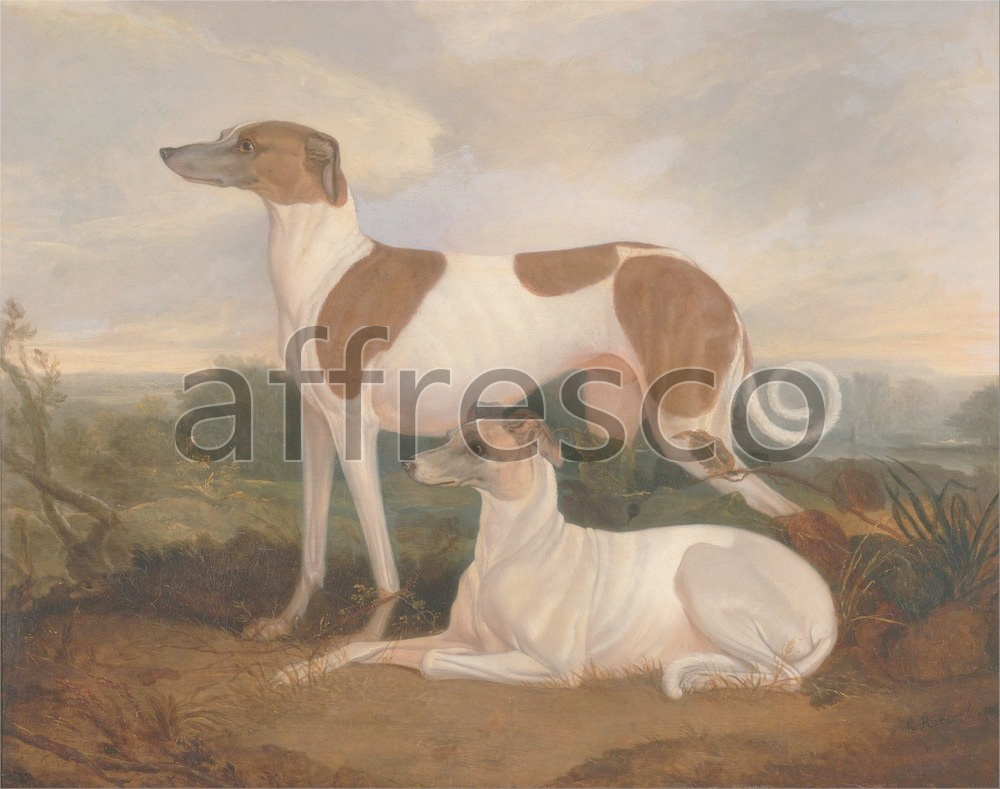 Paintings of animals | Charles Hancock Two Greyhounds in a Landscape | Affresco Factory