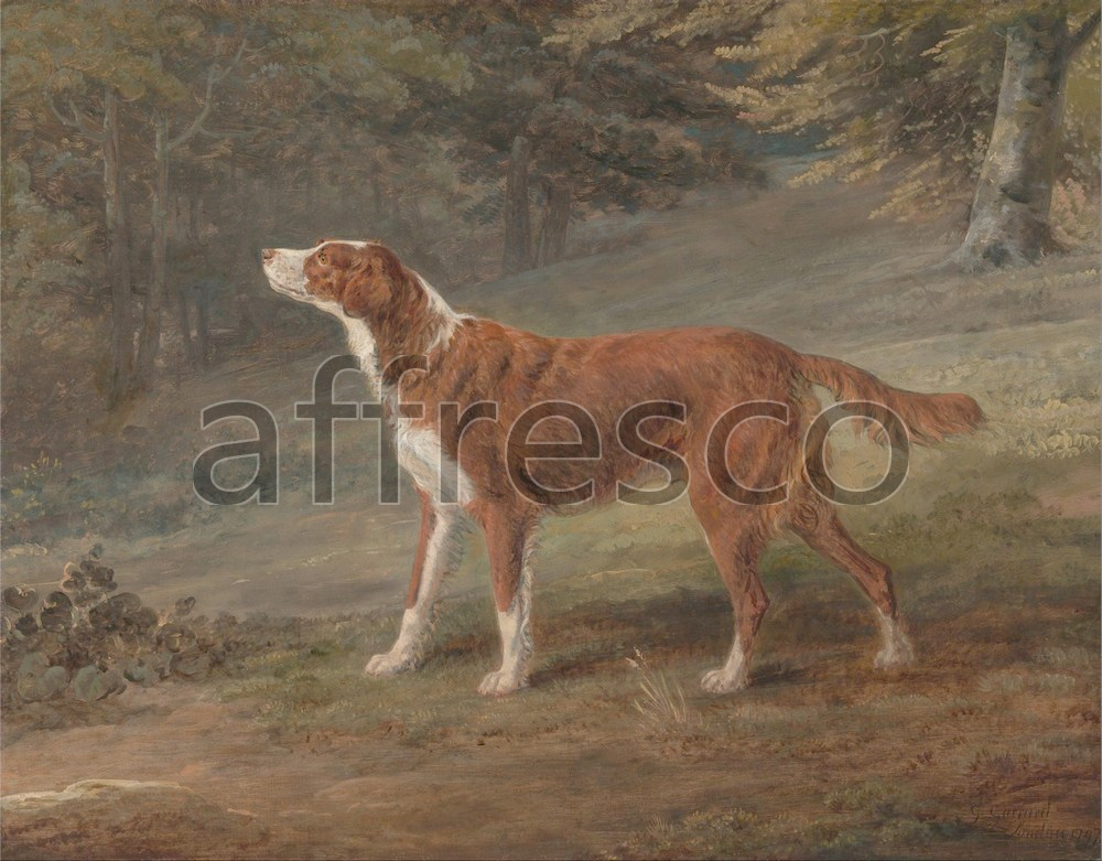 Paintings of animals | George Garrard Ranger a setter the property of Elizabeth Gray | Affresco Factory