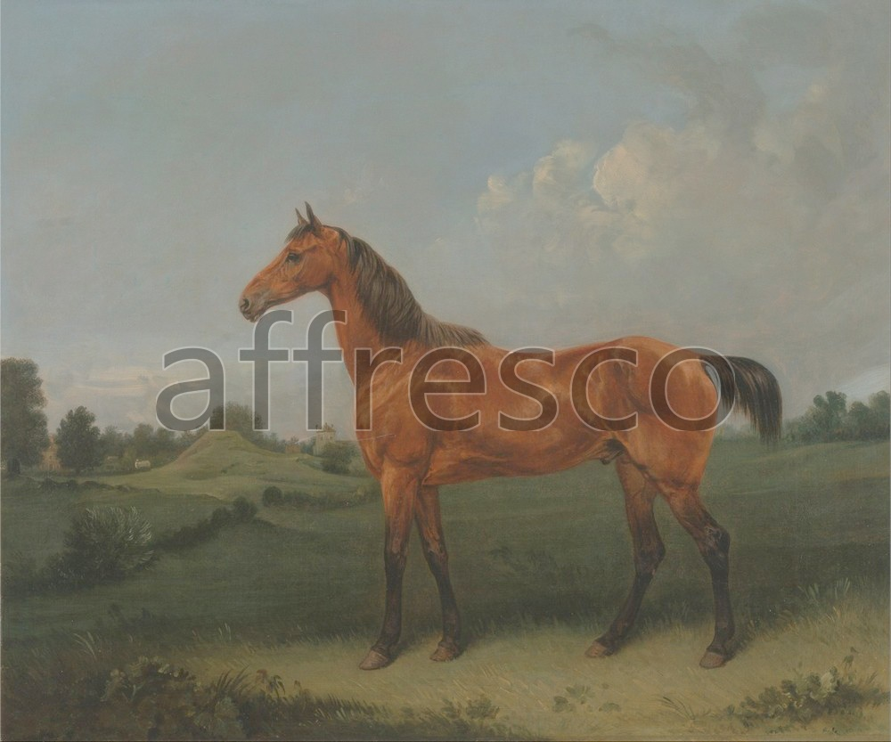 Paintings of animals | Edmund Bristow A Bay Horse in a Field | Affresco Factory