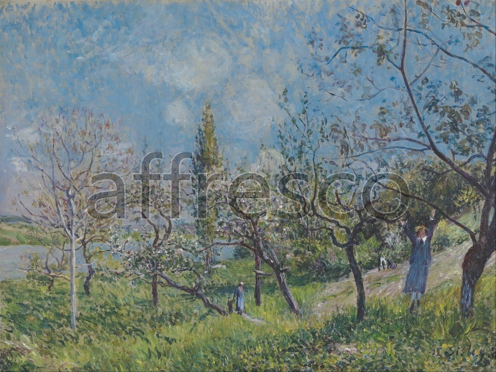 Impressionists & Post-Impressionists | Alfred Sisley Orchard in Spring By | Affresco Factory