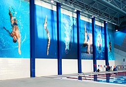 "Large-scale project - Moskomsport pool ""Arena Legend""!"