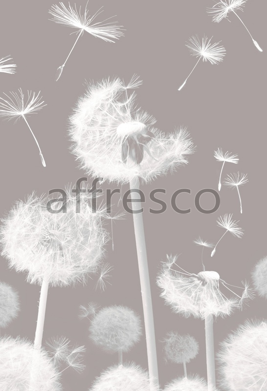 7235 | Flowers | dandelion at the wind | Affresco Factory