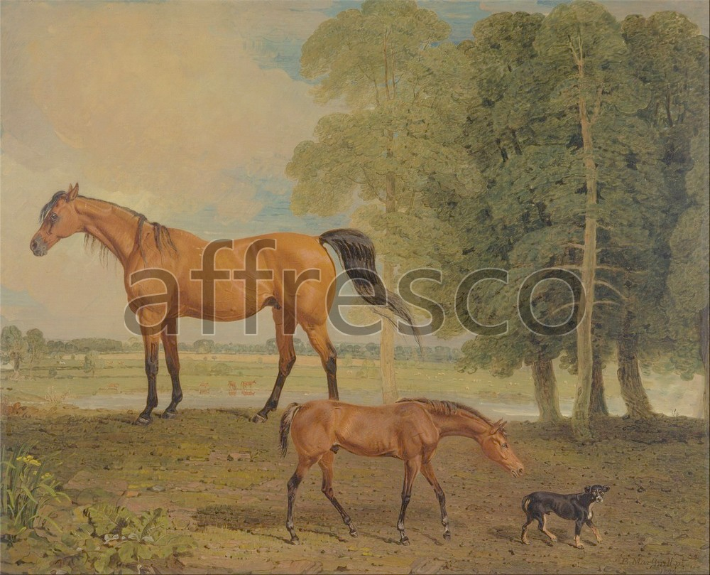 Paintings of animals | Benjamin Marshall Broodmare with Foal and a Terrier | Affresco Factory