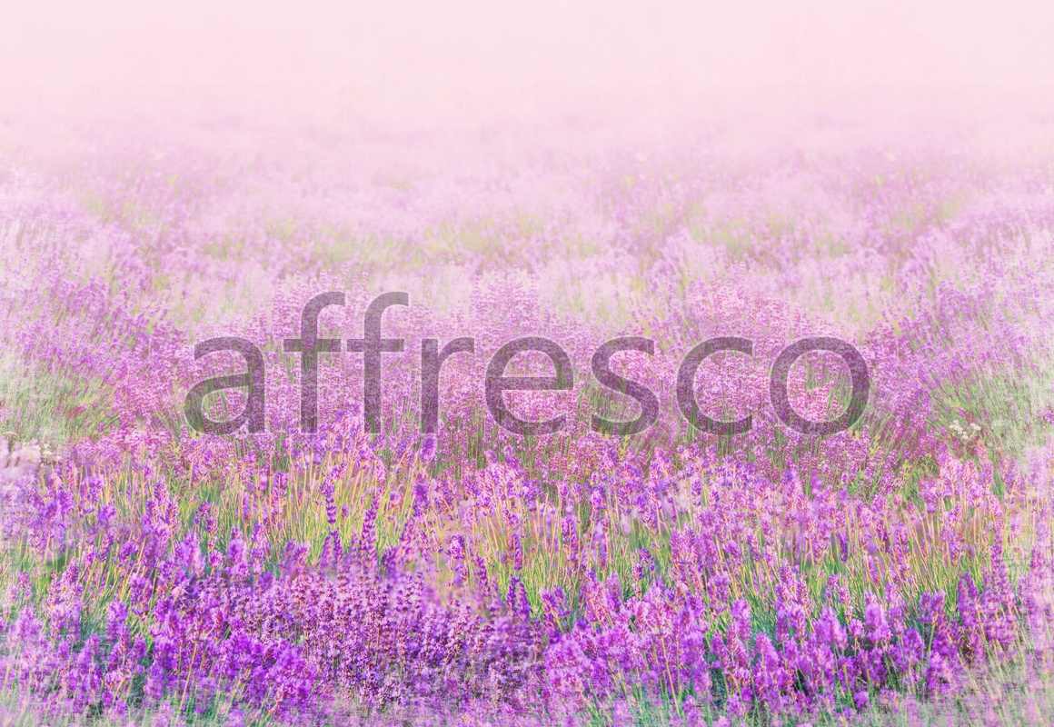 9716 | Pictures of Nature  | Violet flowers | Affresco Factory